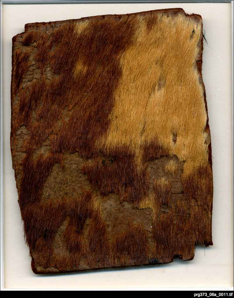 PRG373_06a_0011_Cow_hide